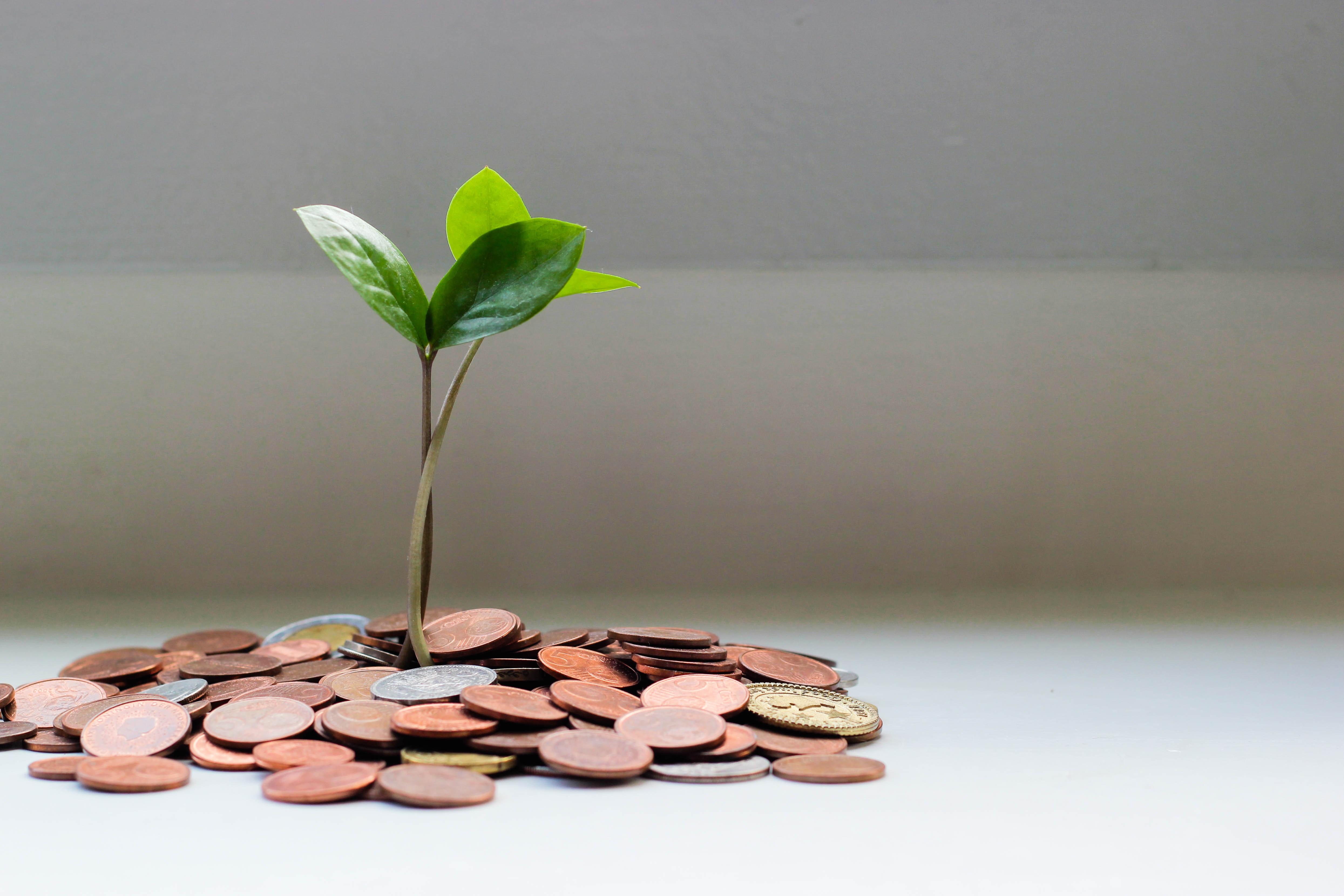 【2020年6月】入社11年目の一部上場企業の給料公開/30代サラリーマンのリアルな金額。支給額の説明。