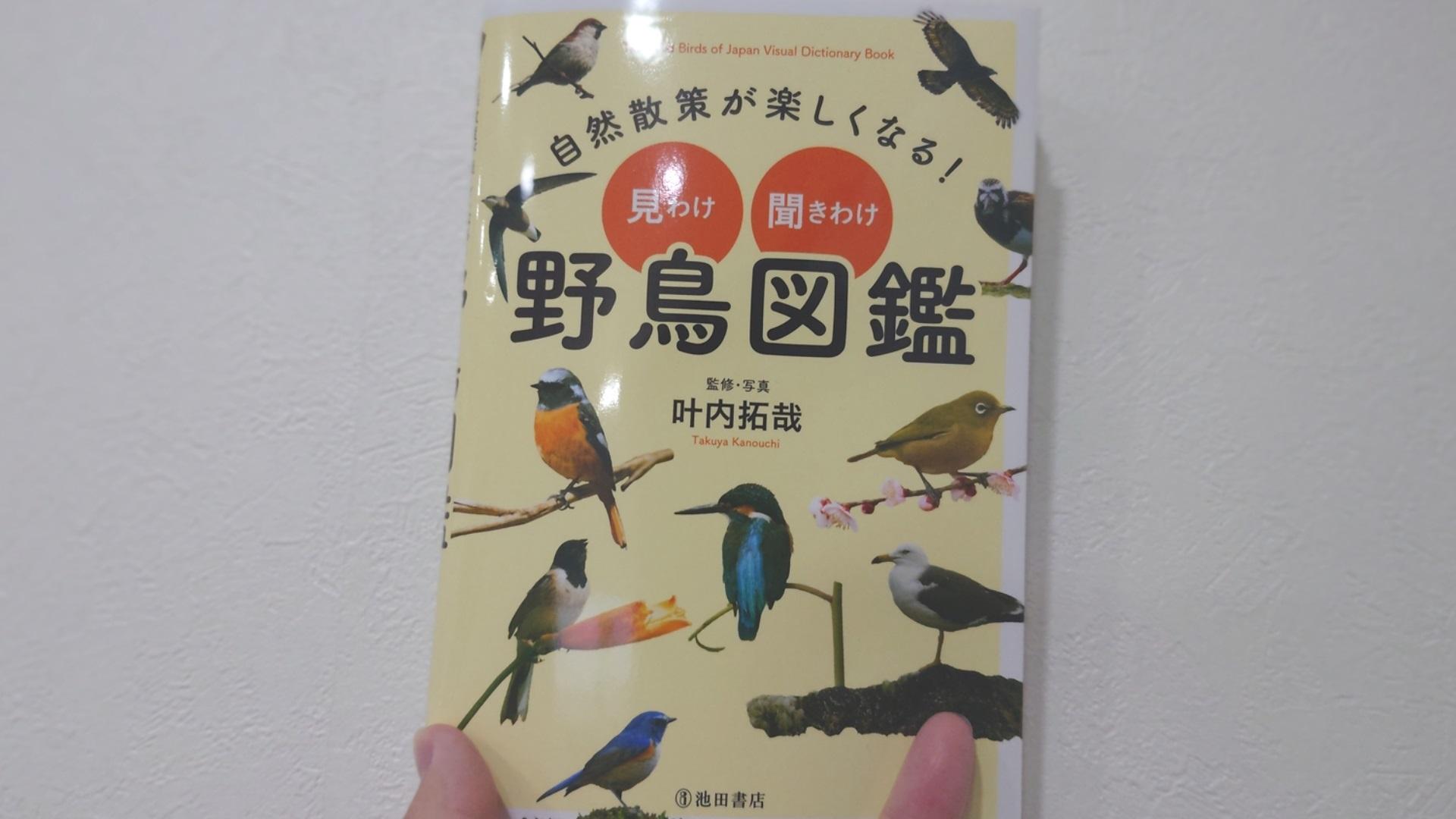 自然散策が楽しくなる!見わけ・聞きわけ野鳥図鑑。監修者叶内拓哉氏。池田書店。イラストではなく写真解説。鳴き声解説あり。