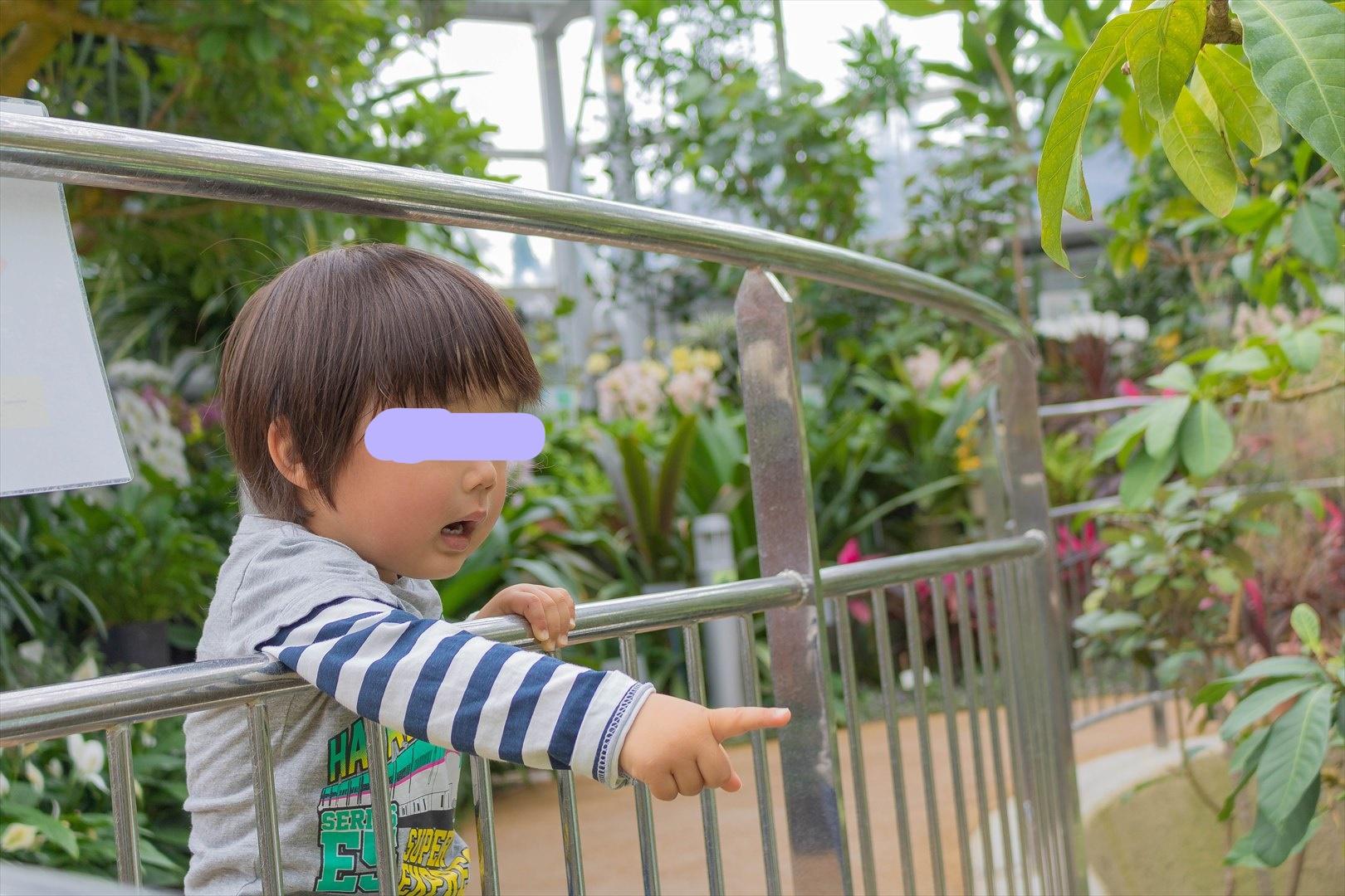 広島市植物公園でカメラ散歩(2021年4月3日午前)Canon EOS Kiss X8iで撮影
