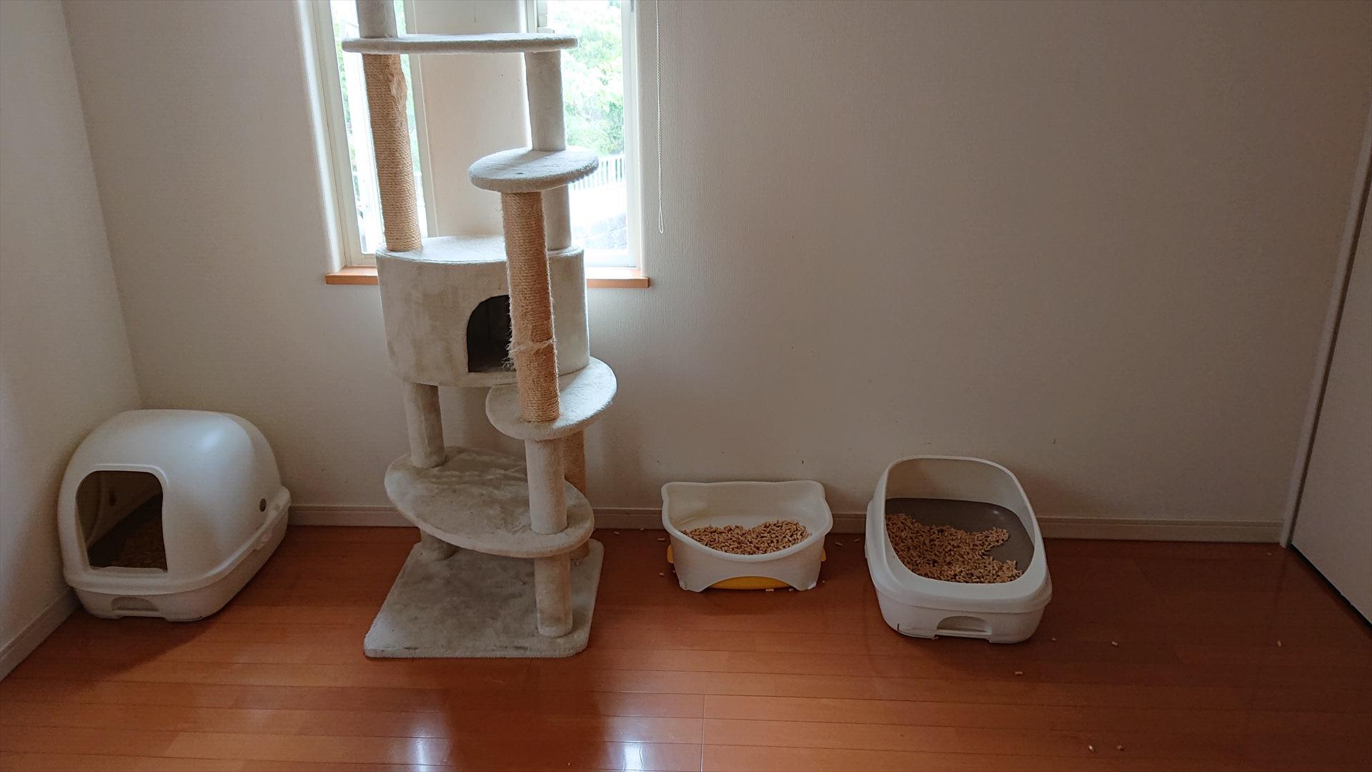 猫のトイレの配置について