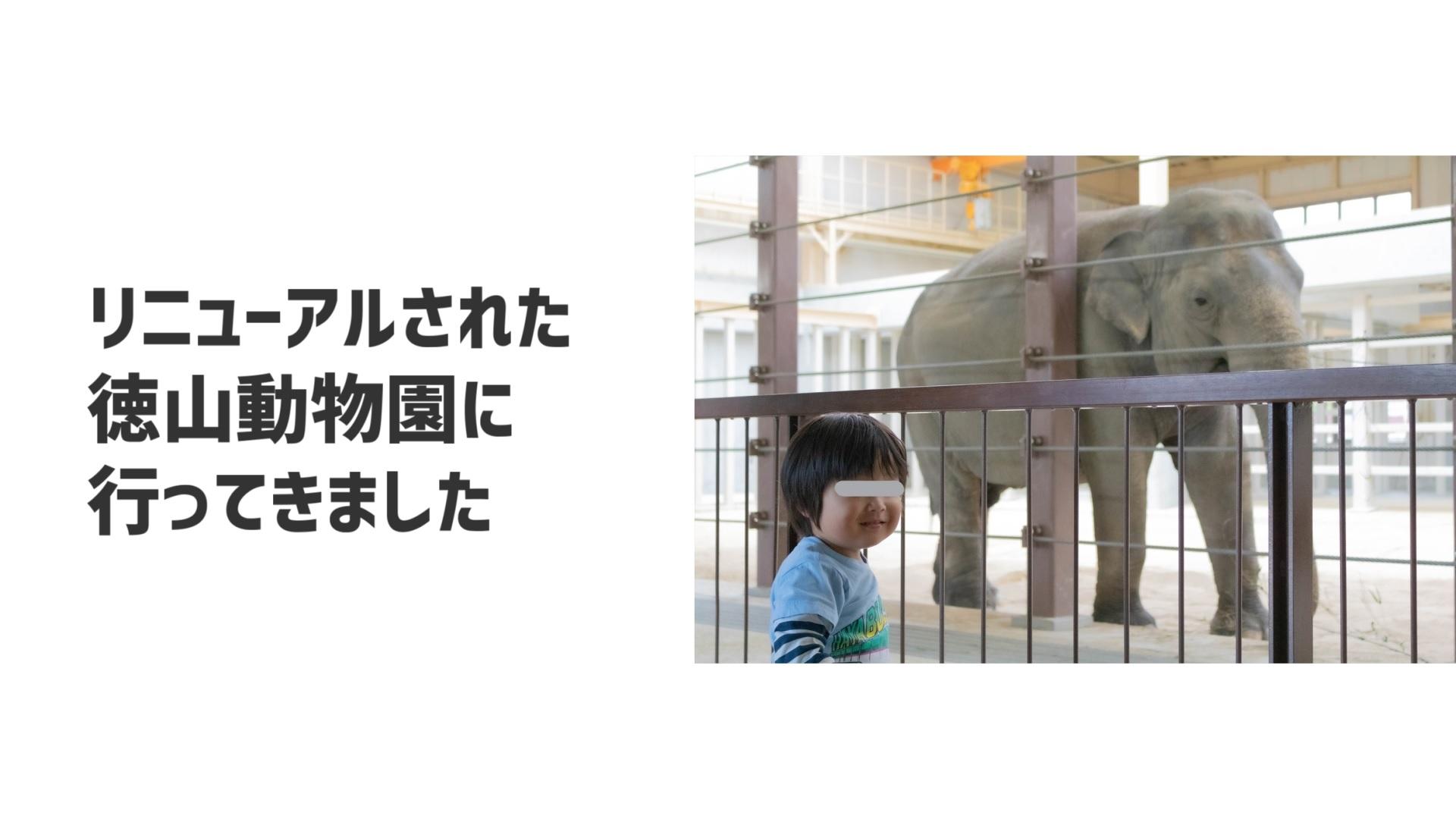 徳山動物園がリニューアル!ゾウ舎も新しくなりました!